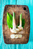 Wortelstok van galangal vers Stock Foto