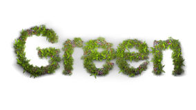 Wortgrün geschrieben durch Blumen und Gras Lizenzfreies Stockfoto