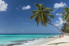 Worthing海滩巴巴多斯印度西部 免版税库存照片