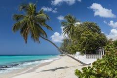 Worthing海滩巴巴多斯印度西部 库存图片