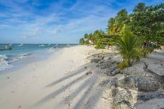 Worthing海滩巴巴多斯印度西部 库存照片