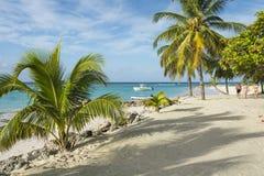 Worthing海滩巴巴多斯印度西部 免版税库存图片