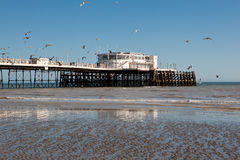 Worthing beach, West Sussex, United Kingdom. People on Worthing pier, West Sussex, England on March 17, 2014 Royalty Free Stock Images