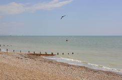 Worthing seafront. Sussex. England Royalty Free Stock Photo