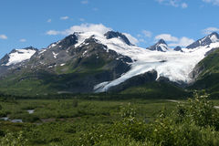 Worthington Glacier. A distant view of the Worthington Glacier near Valdez, Alaska. The photo is taken in a landscape format and includes green vegetation and Royalty Free Stock Image