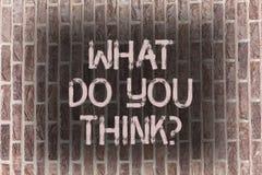 Wortschreibenstext, was Sie Thinkquestion tun Geschäftskonzept für Meinungs-Gefühle kommentieren Urteil-Überzeugungs-Ziegelstein lizenzfreies stockfoto