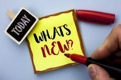 Wortschreibenstext welche neue Frage s Geschäftskonzept für das Stellen der Fragebogen-Untersuchungs-Problem-Frage geschrieben du Stockfotografie