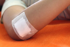 Wound sealed with plaster Stock Image