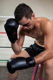 Wounded boxer relaxing in the boxing ring Stock Photography