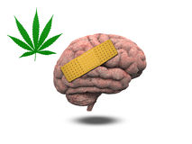 Wounded Brain with Marijuana Royalty Free Stock Photography