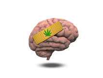 Wounded Brain Marijuana Leaf Bandage Royalty Free Stock Image