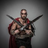 Wounded gladiator Royalty Free Stock Images