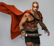 Wounded gladiator with sword Royalty Free Stock Photos