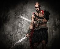 Wounded gladiator Royalty Free Stock Image