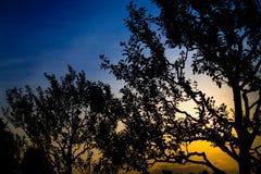 Wounderful Sonnenuntergang stockbilder