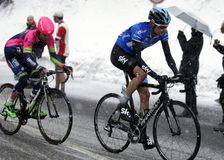 Wouter Poels rise in Terminilo Stock Image