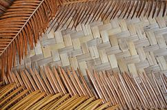 Woven bamboo background of cycad leaves. Dried cycad leaves on woven bamboo textured background Royalty Free Stock Image
