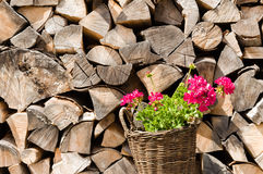 Woven basket with pink flowers in front of a stockpile of neatly arranged wood Stock Photos