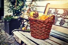 Woven basket with small pumpkins Stock Images