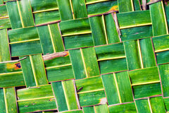 Woven green coconut leaves texture Stock Image