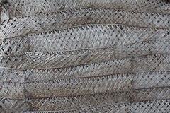 Woven palm leaves. Material used to build homes in olden days in Maldives Royalty Free Stock Images