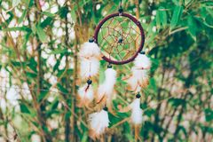 Woven round dream catcher with beads feathers hanging swinging in the wind in bamboo forest. Spiritual accessory lucky charm stock image