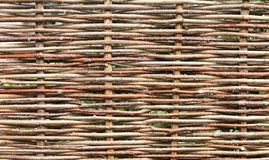 A Woven Willow Background royalty free stock images