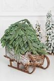 Woven from willow wooden sled with Christmas Tree on a white wall background. copy space.  Royalty Free Stock Photo