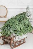 Woven from willow wooden sled with Christmas Tree on a white wall background. copy space.  Royalty Free Stock Images