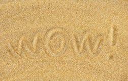 Wow auf dem Sand Stockbild