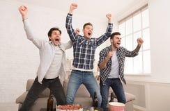 Wow, meta Individuos que miran el partido y que celebran la victoria imagen de archivo libre de regalías