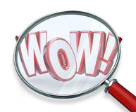 Wow Word Magnifying Glass Search Discovery Amazing Find. An amazing find with the word Wow! under a magnifying glass to illustrate excitement with a surprising Stock Images