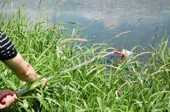 Wp8lywy próbki woda dla laborancki testowanie Pojęcie - analiza wodna czystość, środowisko, ekologia zdjęcie royalty free