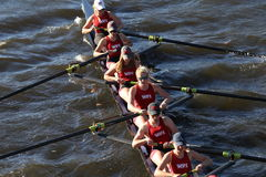 WPI races in the Head of Charles Regatta Women's Collegiate Eights Royalty Free Stock Images