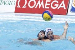 WPO: Campeonatos aquáticos do mundo - EUA contra Roménia Imagem de Stock