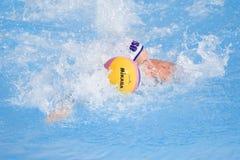 WPO:  USA V Makedonien, 13th världsAquaticsmästerskap Rome 09 Royaltyfri Fotografi
