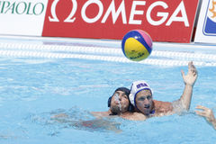 WPO: Wereld Aquatische Kampioenschappen - de V.S. versus Roemenië Stock Afbeelding