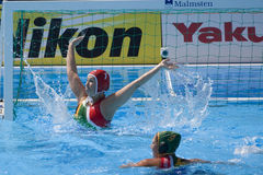 WPO: World Aquatics championship - CAN vs RSA Royalty Free Stock Photo