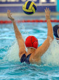 Wpolo goal 01 Royalty Free Stock Photography