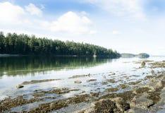 Wpusta widok z odbiciem na wodzie Zdjęcia Stock