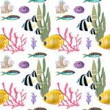 Wręcza patroszonego w akwarela dennym światowym naturalnym elemencie Koral ryby rafy seemless wzór na białym tle royalty ilustracja