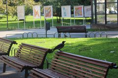 Wróbel na ławce w miasto ogródzie w Sofia blisko Ivan Vazov teatru w Bułgaria Fotografia Royalty Free