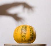 wręcza żadnego dyniowego cienia stołu ściany kolor żółty Fotografia Stock