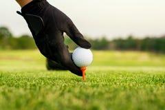 Wręcza chwyt piłkę golfową z trójnikiem na kursie, zakończenie obraz stock