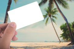 Wręcza chwytowi pustą kartę na obrazku kokosowy drzewo na plaży app Obraz Stock