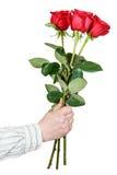 Wręcza dawać bukietowi trzy czerwonej róży odizolowywającej Zdjęcia Stock