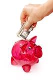 Wręcza kładzenie banknot w prosiątko banka Zdjęcie Royalty Free