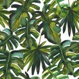 Wręcza malującą ilustrację dla lato projekta, naturalny tło Fotografia Royalty Free