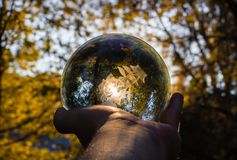wręcza mienie kryształową kulę z żółtymi drzewami i słońcem na b fotografia stock