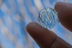 Wręcza mienie kryształową kulę z odbiciem zimy drzewo i błękitny Fotografia Stock